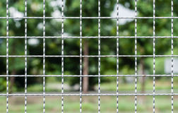 Wire fence. Stock Image