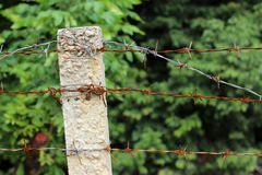 The wire fence Royalty Free Stock Image
