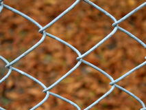 Wire fence detail Stock Images