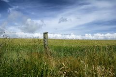A wire fence in front of a meadow stock images