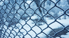 Wire fence frozen Stock Image