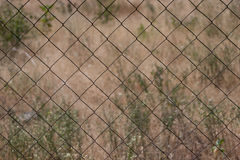 Wire fence. With grass on background Royalty Free Stock Image
