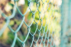 Wire fence with green grass on background Stock Images