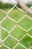 Wire fence with green grass on background Stock Photo