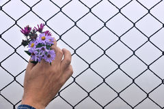 Wire fence holding hands and background Stock Photography