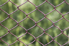 Wire fence. In the shape of a rhomb Royalty Free Stock Image