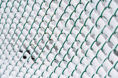 Wire fence with snow Stock Images
