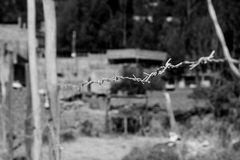 Wire fence with spiked wire rope. Cattle spike fence Stock Image