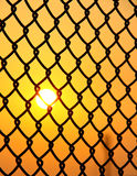 Wire fence with sun rise Royalty Free Stock Photo