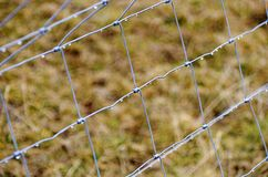 Wire fence with water drops Stock Images