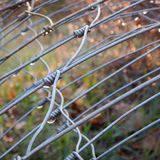 Wire or fence wet with a morning dew Royalty Free Stock Photography