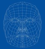 Wire-frame abstract human face. Concept of 3d Face recognition. Vector illustration rendering of 3d Royalty Free Stock Photos