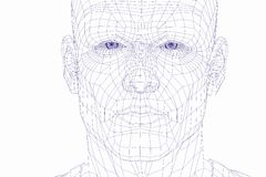Wire frame cyber man face Royalty Free Stock Image
