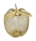 Wire Frame Golden Apple Stock Images