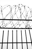 Wire gauze Stock Images
