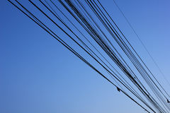 Wire line. And background blue sky Stock Images