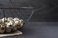 Wire mesh basket with quail eggs. Dark food photography. Rustic background, selective focus and diffused natural light. Stock Photos