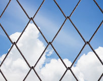 Wire Mesh. Royalty Free Stock Photo