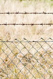 Wire mesh close Royalty Free Stock Photos