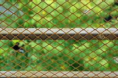 Wire Mesh Close-up Royalty Free Stock Photo