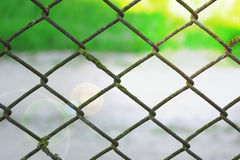 Wire mesh fence fenced plot. Background royalty free stock image