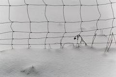 Wire mesh fence in snow Royalty Free Stock Photography