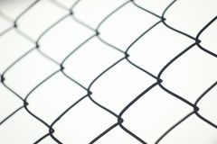 Wire mesh frence abstract. Frence from wire mesh steel Royalty Free Stock Photo