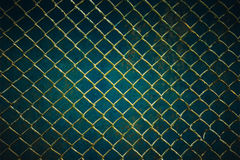Wire mesh steel with green grass background Royalty Free Stock Photography