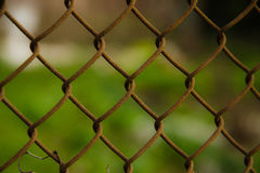 Wire mesh steel with green grass background Stock Photos