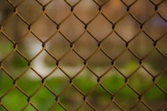 Wire mesh steel with green grass background Stock Photography