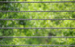 Wire nature background Stock Photo