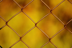 Wire netting. Close-up of wire netting Royalty Free Stock Photography