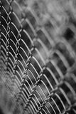 Wire netting - depth of field. Close-up Royalty Free Stock Photos
