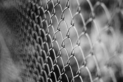 Wire netting - depth of field. Close-up Stock Photo