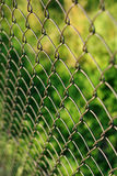 Wire netting - depth of field. Close-up Royalty Free Stock Photography