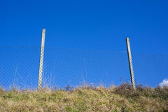 Wire netting fence. Wire netting as barrier. Protection against entering into territory of restricted area. Clear blue sky in the background Royalty Free Stock Photos