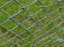 Wire netting, fence, gardening Royalty Free Stock Photography