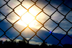 Wire Netting at Sunset Stock Images