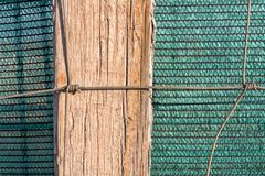 Wooden stick at green background stock photos