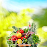 Wire shopping basket with groceries Stock Photography