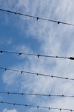 Wire in the sky Stock Photo