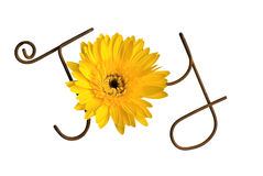 Wire Word: Joy Stock Photos
