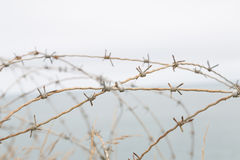 Wire of World War II Royalty Free Stock Photography