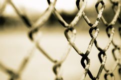 Wired fence Stock Image
