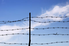 Wired fence with barbed wires Stock Images