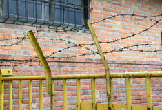 Wired fence with barbed wires Royalty Free Stock Images
