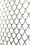 Wired fence Royalty Free Stock Images