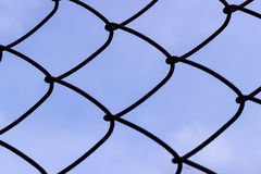 Wired fence on a sky background Stock Photo