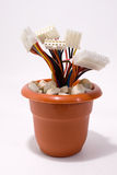 Wired flower pot. Flower pot with data cables Royalty Free Stock Photo