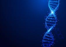 Wireframe DNA molekuły konstruują siatkę od gwiaździstego ilustracji